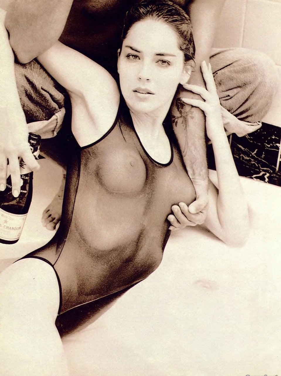 Sharon Stone Nude in Transparent Swimsuit Picture From the Past